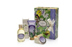 GIFT BOUTIQUE Essence set Limy Lavender